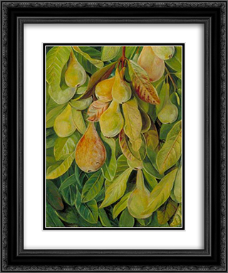 Cabazina Pears, Brazil 20x24 Black or Gold Ornate Framed and Double Matted Art Print by Marianne North