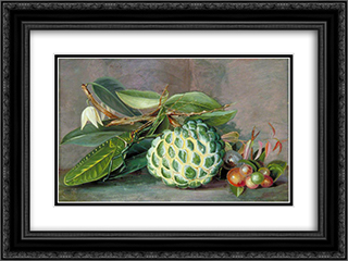 Custard Apple, Native 'Gooseberry' of Sarawak, and Leaf Locust 24x18 Black or Gold Ornate Framed and Double Matted Art Print by Marianne North