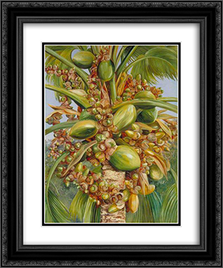 Female Coco de Mer Bearing Fruit Covered with Small Green Lizards 20x24 Black or Gold Ornate Framed and Double Matted Art Print by Marianne North