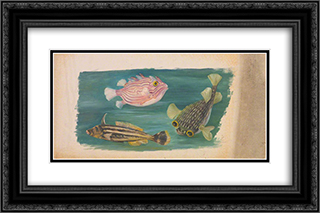 Fishes 24x16 Black or Gold Ornate Framed and Double Matted Art Print by Marianne North