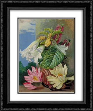 Flowers Cultivated in the Botanic Garden, Rio Janeiro, Brazil 20x24 Black or Gold Ornate Framed and Double Matted Art Print by Marianne North
