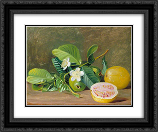 Foliage, Flowers and Fruit of a Variety of Guava 24x20 Black or Gold Ornate Framed and Double Matted Art Print by Marianne North