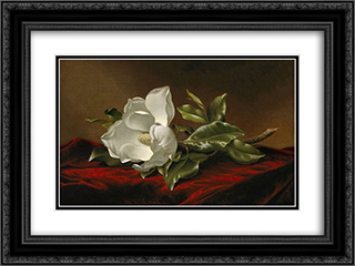 Magnolia Grandiflora 24x18 Black or Gold Ornate Framed and Double Matted Art Print by Martin Johnson Heade