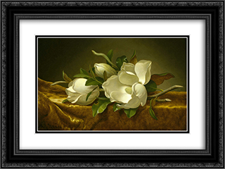 Magnolias on Gold Velvet Cloth 24x18 Black or Gold Ornate Framed and Double Matted Art Print by Martin Johnson Heade