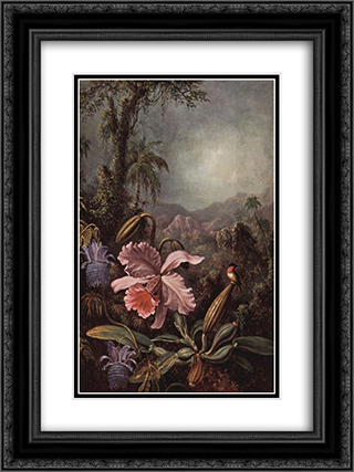 Orchid and Hummingbird 18x24 Black or Gold Ornate Framed and Double Matted Art Print by Martin Johnson Heade