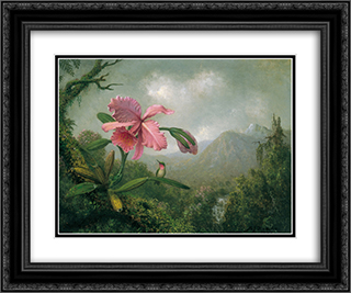 Orchid and Hummingbird near a Mountain Waterfall 24x20 Black or Gold Ornate Framed and Double Matted Art Print by Martin Johnson Heade