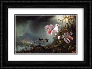 Two Fighting Hummingbirds with Two Orchids 24x18 Black or Gold Ornate Framed and Double Matted Art Print by Martin Johnson Heade