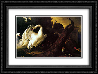 Swans and peacocks 24x18 Black or Gold Ornate Framed and Double Matted Art Print by Melchior d'Hondecoeter