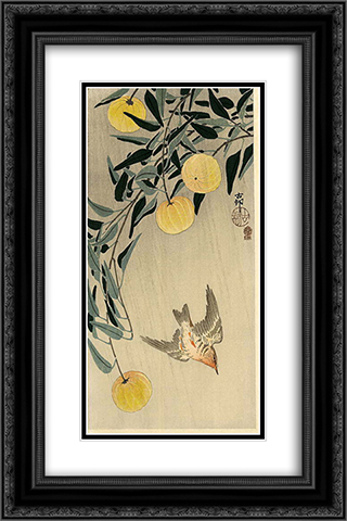 Cuckoo - Early Summer's Rain 16x24 Black or Gold Ornate Framed and Double Matted Art Print by Ohara Koson