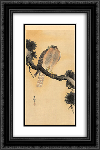 Falcon on a Branch 16x24 Black or Gold Ornate Framed and Double Matted Art Print by Ohara Koson