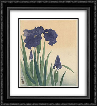Flowering iris 20x22 Black or Gold Ornate Framed and Double Matted Art Print by Ohara Koson