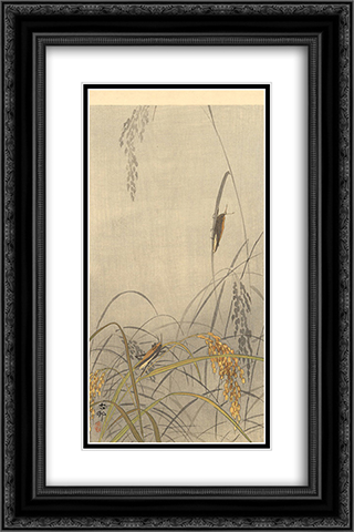 Grasshoppers on Rice Plants 16x24 Black or Gold Ornate Framed and Double Matted Art Print by Ohara Koson