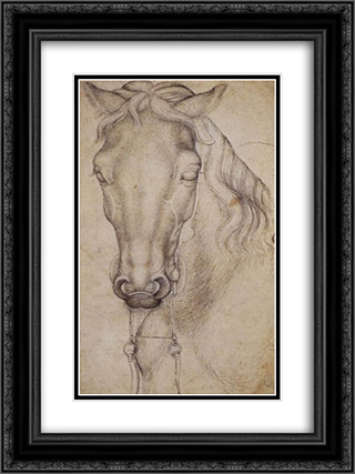 Study of the Head of a Horse 18x24 Black or Gold Ornate Framed and Double Matted Art Print by Pisanello
