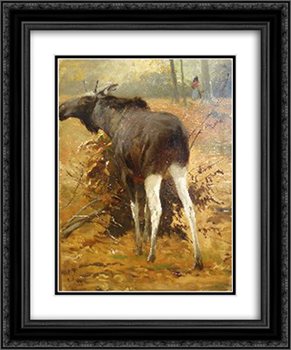 Browsing Moose 20x24 Black or Gold Ornate Framed and Double Matted Art Print by Richard Friese