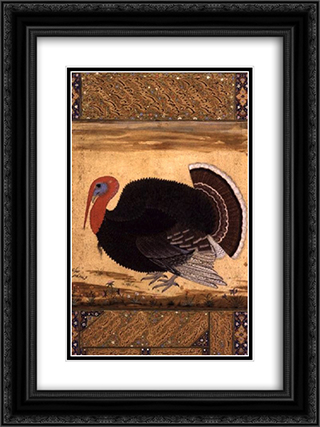 A turkey-cock brought to Jahangir from Goa in 1612 18x24 Black or Gold Ornate Framed and Double Matted Art Print by Ustad Mansur