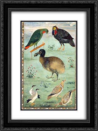 Dodo 18x24 Black or Gold Ornate Framed and Double Matted Art Print by Ustad Mansur