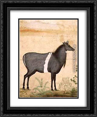 Nilgai Blue Cow 20x24 Black or Gold Ornate Framed and Double Matted Art Print by Ustad Mansur
