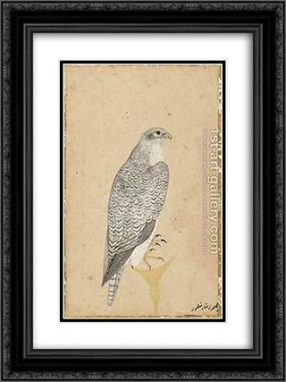 Portrait of a Falcon from Northern India 18x24 Black or Gold Ornate Framed and Double Matted Art Print by Ustad Mansur
