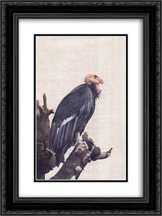 unknown title 18x24 Black or Gold Ornate Framed and Double Matted Art Print by Ustad Mansur