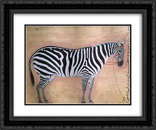 Zebra 24x20 Black or Gold Ornate Framed and Double Matted Art Print by Ustad Mansur