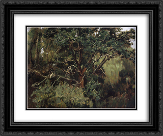 Akhtyrsky oak 24x20 Black or Gold Ornate Framed and Double Matted Art Print by Viktor Vasnetsov
