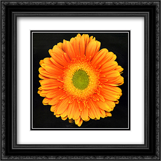 Radiance 2x Matted 15x18 Black Ornate Framed Art Print by Feinstein
