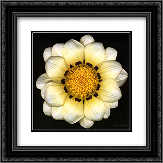 Reverie 2x Matted 15x18 Black Ornate Framed Art Print by Feinstein