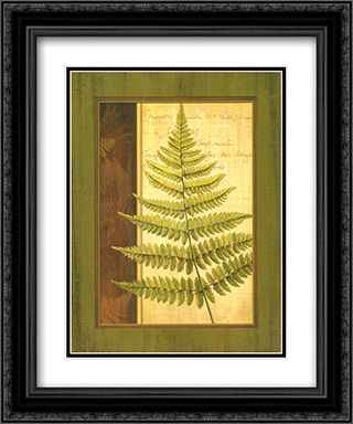 Fern Grotto I 2x Matted 15x18 Black Ornate Framed Art Print by Delphine Corbin