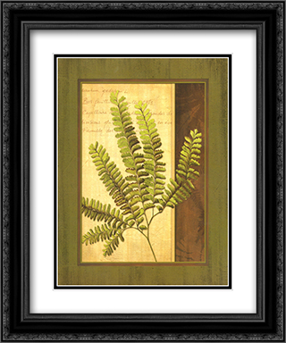 Fern Grotto II 2x Matted 15x18 Black Ornate Framed Art Print by Delphine Corbin