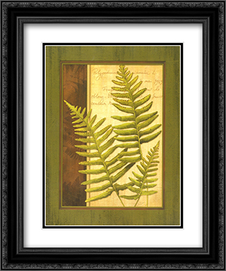 Fern Grotto III 2x Matted 15x18 Black Ornate Framed Art Print by Delphine Corbin