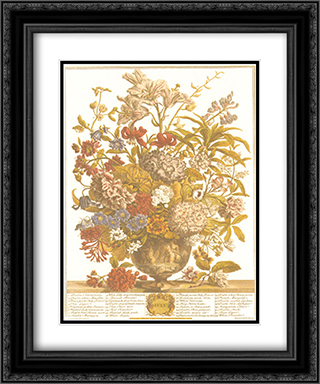 Twelve Months of Flowers, 1730/July 2x Matted 13x16 Black Ornate Framed Art Print by Robert Furber