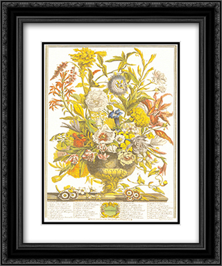 Twelve Months of Flowers, 1730/September 2x Matted 14x16 Black Ornate Framed Art Print by Robert Furber