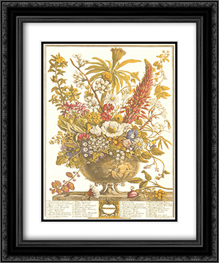 Twelve Months of Flowers, 1730/December 2x Matted 13x16 Black Ornate Framed Art Print by Robert Furber