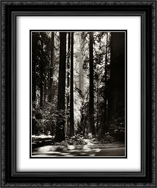 Redwoods, Founder's Grove 2x Matted 15x18 Black Ornate Framed Art Print by Ansel Adams