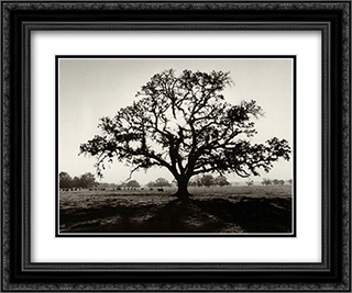 Oak Tree Sunrise 2x Matted 15x18 Black Ornate Framed Art Print by Ansel Adams