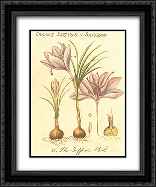 Global Spices III 2x Matted 15x18 Black Ornate Framed Art Print by Janice M. Brooks