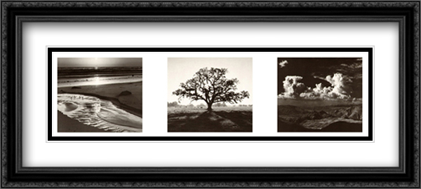 Trilogy 2x Matted 40x16 Extra Large Black Ornate Framed Art Print by Ansel Adams