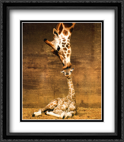 Makulu 2x Matted 28x32 Extra Large Black Ornate Framed Art Print by D'Raine, Ron