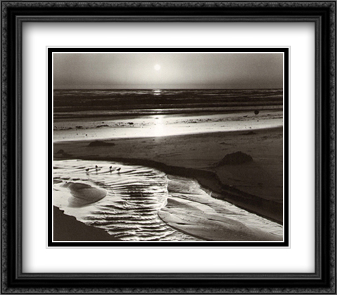 Birds on a Beach 2x Matted 32x28 Extra Large Black Ornate Framed Art Print by Adams, Ansel