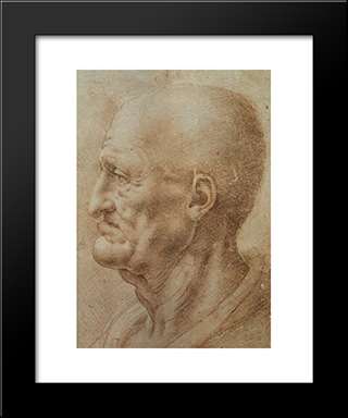 Study Of An Old Man'S Profile: Modern Custom Black Framed Art Print by Leonardo Da Vinci