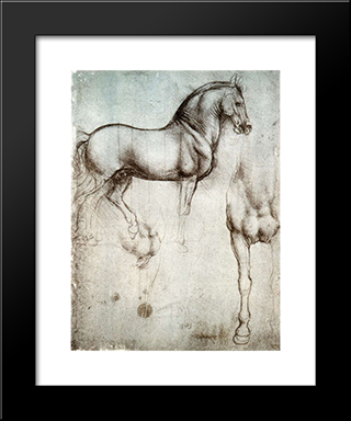 Study Of Horses: Modern Custom Black Framed Art Print by Leonardo Da Vinci