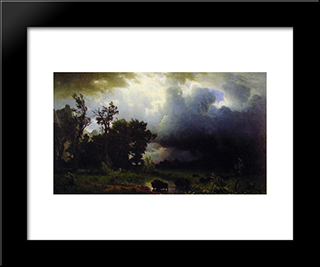 Buffalo Trail: Modern Custom Black Framed Art Print by Albert Bierstadt