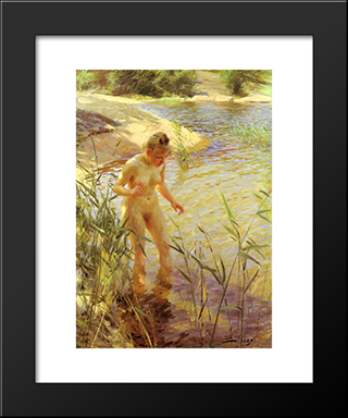 Reflexions: Modern Custom Black Framed Art Print by Anders Zorn