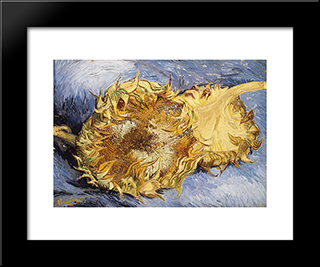 Sunflowers: Modern Black Framed Art Print by Vincent van Gogh