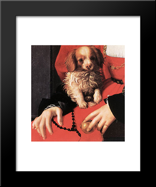 Portrait Of A Lady With A Puppy [Detail]: Modern Black Framed Art Print by Agnolo Bronzino