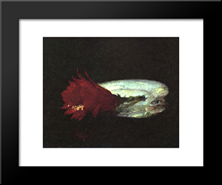 Shell And Flower: Modern Black Framed Art Print by John LaFarge