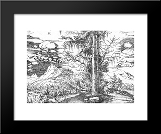 Landscape: Modern Black Framed Art Print by Denys van Alsloot
