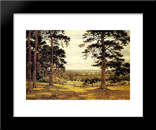 A Peep Through The Pines: Modern Black Framed Art Print by Benjamin Williams Leader