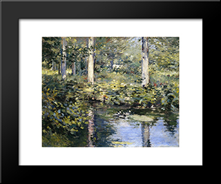 The Duck Pond: Modern Black Framed Art Print by Theodore Robinson