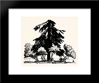 Pine Tree: Modern Black Framed Art Print by Anna Ostroumova Lebedeva